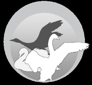 Søfuglevejenes grundejerforening - Mørke